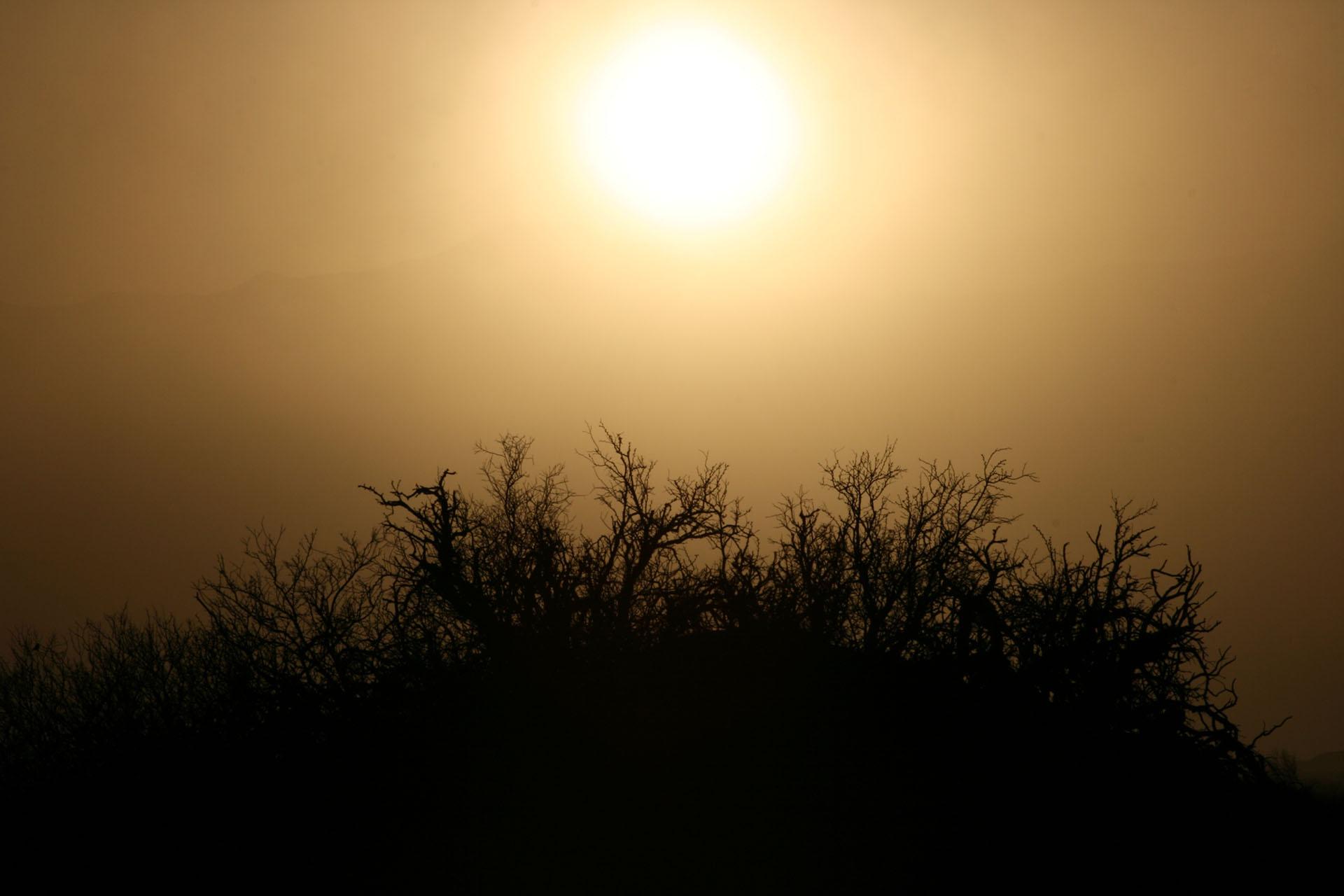 Desert_6523_1_sm