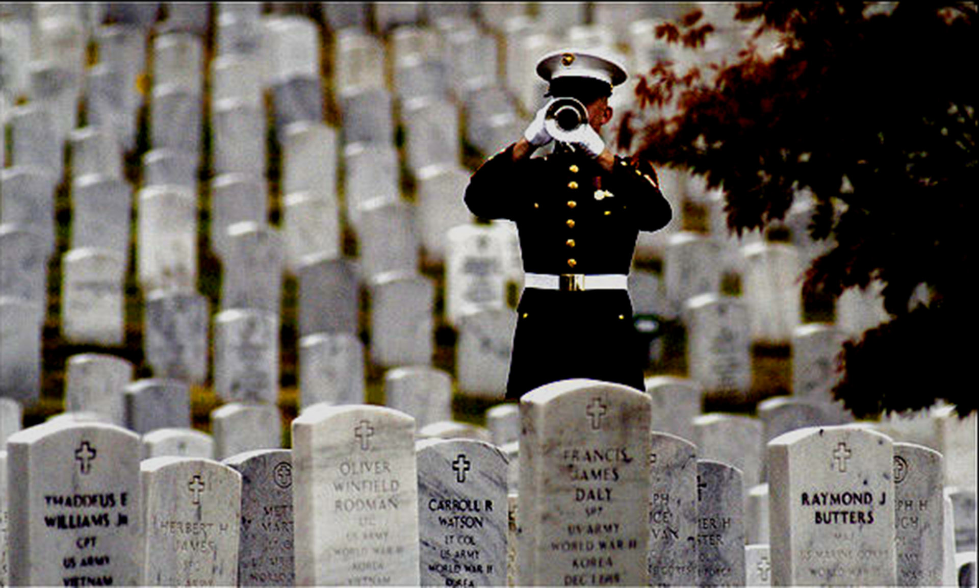 Date:  Oct. 7, 2005 Slug:  me-burial assignment #  173242 Location: Arlington National Cemetery  Photographer: Gerald Martineau Summary:  Vietnam War Multiple Burial Cereemony caption:  A bugler plays taps at memorial services for 12 members of the Armed Forces, one Green Beret and 11 Marines, who died in Vietnam in May 1968.  StaffPhoto imported to Merlin on  Fri Oct  7 13:51:06 2005